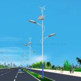中国の最も安い12V 24V 500Wの風の太陽ハイブリッド発電機の街灯システム