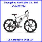 Gebirgsmg-Legierungs-elektrisches Fahrrad für Erwachsenen