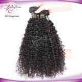 Cheveu 100% normal de Vierge de couleur tissant le cheveu bouclé