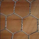 高品質の六角形の金網