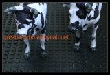 Stuoia della mucca, anti stuoia di slittamento, piccola stuoia di gomma quadrata