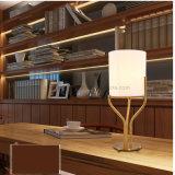 Lampe neuve DEL de Tableau de type chinois de tissu pour la pièce d'étude