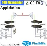 12 GE Muxponder con due il circuito di collegamento di 10g SFP+