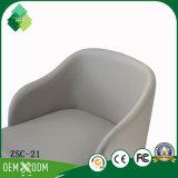 販売(ZSC-21)のための快適で簡単な様式の居間の椅子