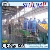 Berufsfertigung-Guajava-Soße-Produktionszweig/Guajava-Soße-Verarbeitungsanlage für Verkauf
