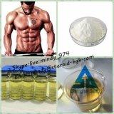 Testoterone superiore Enanthate della polvere degli steroidi anabolici per sviluppo del muscolo