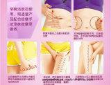 Тело Afy Slimming сливк эффективно ломает вниз с тучной сливк потери веса для ноги шкафута рукоятки руки