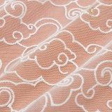 Le donne di alta qualità vestono il tessuto africano del merletto