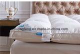 Matras voor Huis/het Gebruik van het Hotel/van het Ziekenhuis