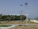 20W 30W 45W 60W 6mの太陽LEDの街灯7m 8m街灯柱
