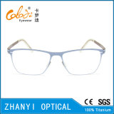 Bunter leichter Voll-Rahmen optische Glas-Rahmen-Titanbrille Eyewear (9108-EW)