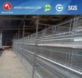 Cage de couche de poulet avec le système alimentant automatique pour la ferme de poulet d'oeufs de la Zambie