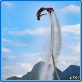 China Flyboard für Verkauf