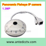 Fisheye 360 Degree IP Cameras, 1.3MP Panoramic Network Camera Suppliers