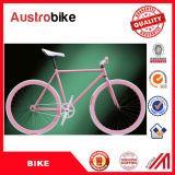 La aleación de aluminio llena al por mayor 700c parte la bici fijada velocidad de bambú China del engranaje del marco la sola para la venta con Ce