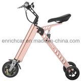 3개의 바퀴를 가진 최고 점화기 Foldable 전기 자전거