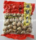 Fungo di Shiitake ventilato del fiore bianco con il contenitore di regalo di colore