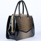 Nuova unità di elaborazione Handbags di Style Lady Desigber con Highquality (P6398)