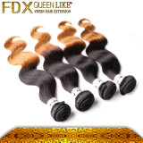 インドのHair Products Wholesale Price 1b 27 Ombre Color Hair