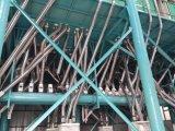 120 a 150 toneladas del trigo de molinos harineros de la producción