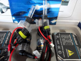 C.A. 12V 35W H3 HID Conversion Kit com Regular Ballast