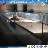 Folha acrílica para o projeto da piscina do hotel