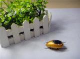 Brinquedo novo 5 de 2016 miúdos do projeto em 1 formiga/abelha/besouro/caranguejo/Scarab #16n1-8 do brinquedo do poder solar DIY