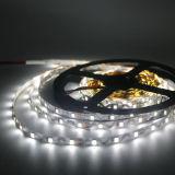 """ S "" 모양 60LEDs/M SMD2835 구부릴 수 있는 LED 지구"