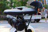 """Motocicleta elétrica poderosa do """"trotinette"""" com o motor 1000W"""