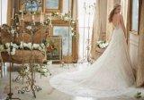 Isolationsschlauch-Brücke-Brautkleider Diamante, das Spitze-Tulle-Hochzeits-Kleid Mrl2883 bördelt