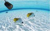 Inspeção ao ar livre subaquática do CCTV 520tvl do preço de fábrica HD 50m câmera video do CCTV da mini