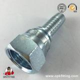 Montaggio di tubo flessibile idraulico foggiato con uno stampo di Jic del acciaio al carbonio