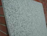 Bianco White Granite G655 per Airport Project