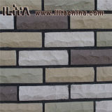 Mattone di pietra di superficie solido della pietra di pietra artificiale del rivestimento (YLD-12024)