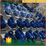OBERSEITE-Qualitätsheißer verkaufender Dreiphaseninduktionsmotor