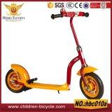 """""""trotinette""""s da bicicleta e do bebê do balanço de duas rodas"""