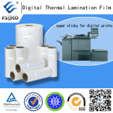 Special Printing를 위한 최고 Sticky Plastic Thermal Laminating Film