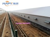 One Stop에 있는 Machinery를 가진 Livestock에 있는 Prefabricated Steel Frame House