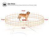 Nuevo perseguidor del GPS del collar de perro 2016