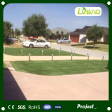Grama artificial, grama do jardim, gramado, ajardinando o relvado