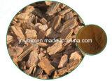 100% d'extrait d'écorce de pin antioxydant naturel, poudre de proanthocyanidines à 95%