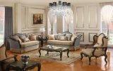 L'insieme antico americano del sofà con il blocco per grafici di legno & la Tabella classica ha impostato per il salone
