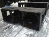 2016 verdoppeln heiße Zeile Reihen-Neodym des Verkaufs-V25 ein 15 Zoll-Audio