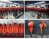 Élévateur à chaînes de &Hand de bloc de levier de 6 tonnes