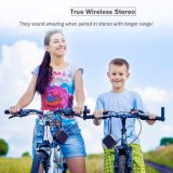 Haut-parleur portatif sans fil professionnel de Bluetooth du joueur MP4 mini