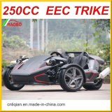 2017 New Style 250cc 3 roues Ztr Trike Roadster