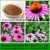 Het Poeder van het Uittreksel van Echinacea, het Uittreksel van Echinacea Purpurea