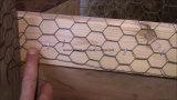 PVC農場の塀のための上塗を施してある六角形ワイヤー網か六角形ワイヤー網