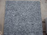 De natuurlijke Steen poetste Wit Graniet, Witte die Golf aan de Tegel/de Plak van de Grootte voor Trede wordt gesneden/Countertop/de Bovenkant van de Ijdelheid op