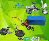 18650 Lithium-Ionenbatterie-Satz 12V 17.6ah für elektrisches Straßenlaterne